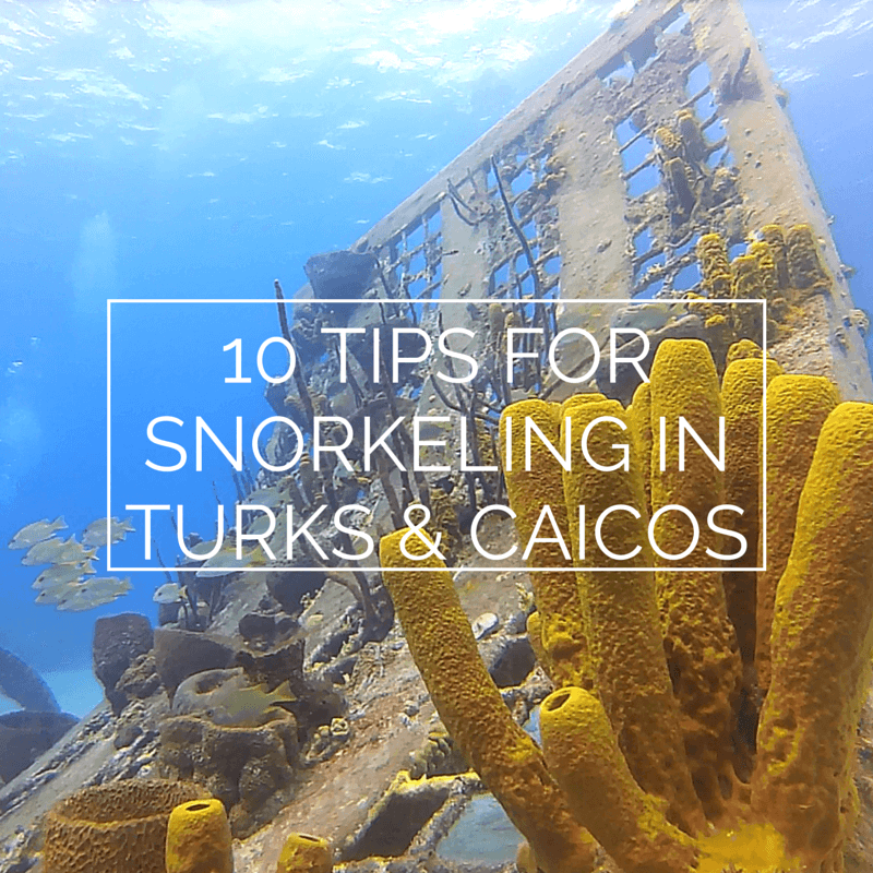 10 tips for snorkeling in turks & caicos