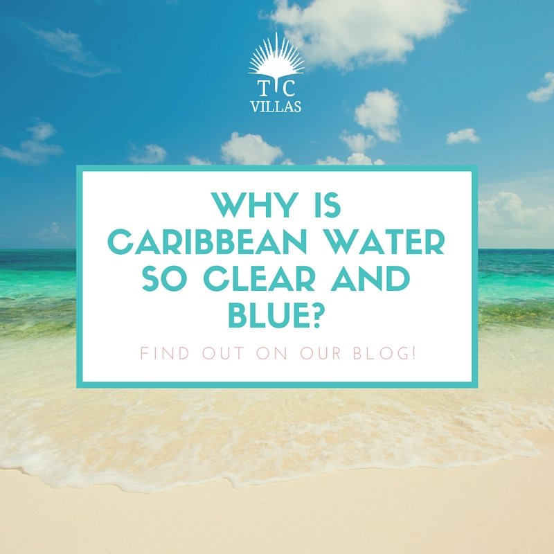 Why is caribbean water so clear and blue-