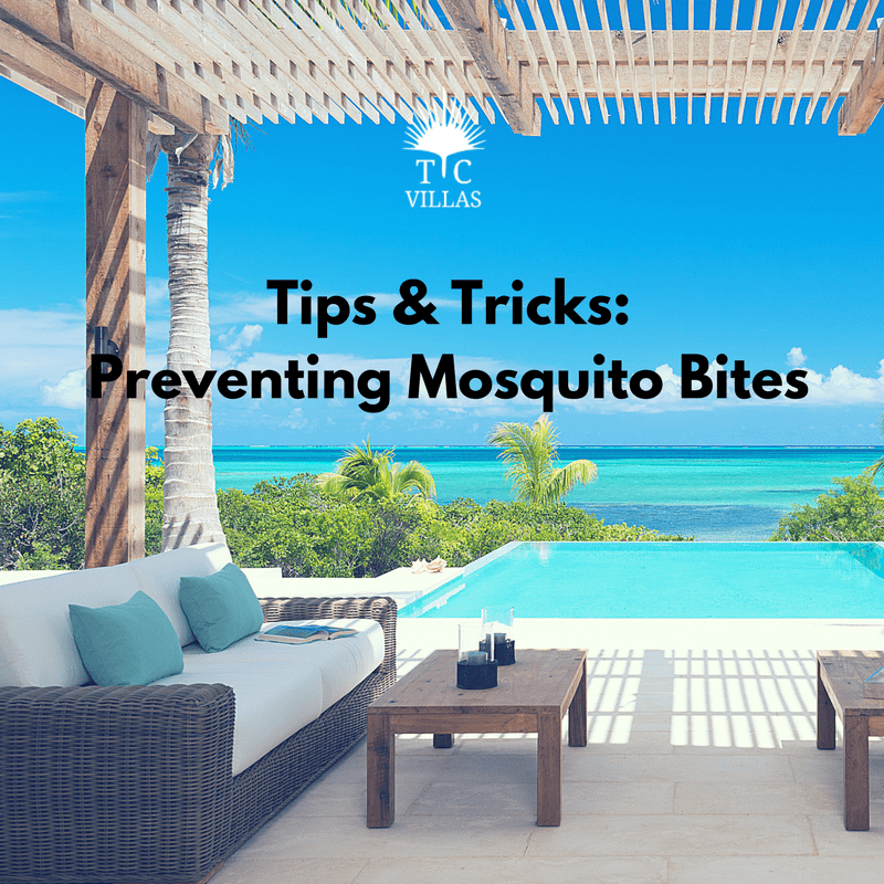 Tips & Tricks-Mosquitoes