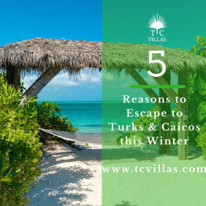 5 reasons to escape