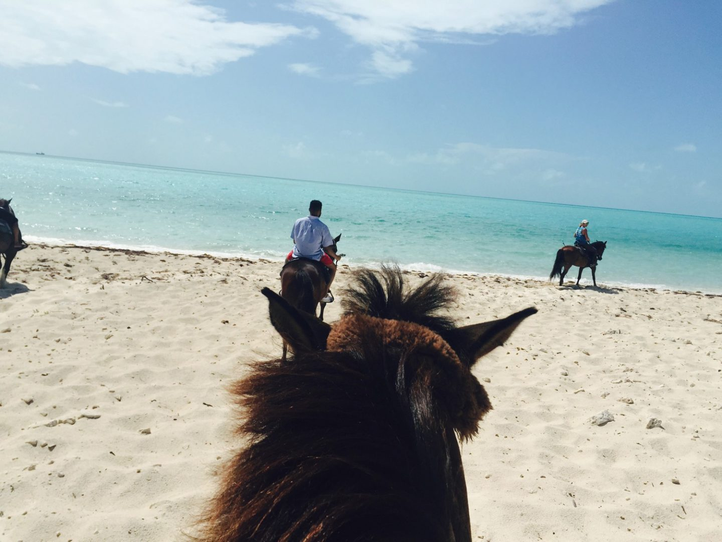 Horse Riding in Providenciales Turks and Caicos