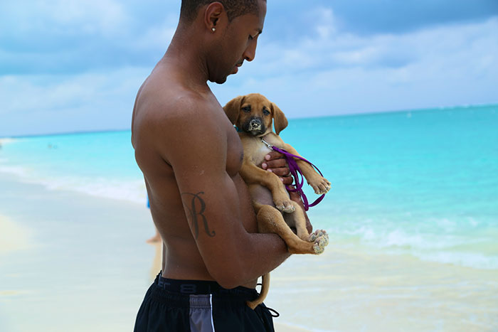 Man with Potcake Puppy in Providenciales Turks & Caicos