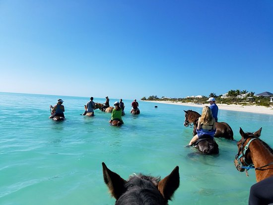 Horseback Riding on the beach in Providenciales, Turks and Caicos